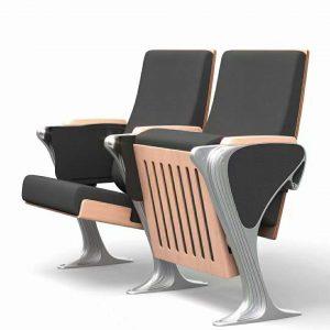 AUDITORIUM THEATER SEATS